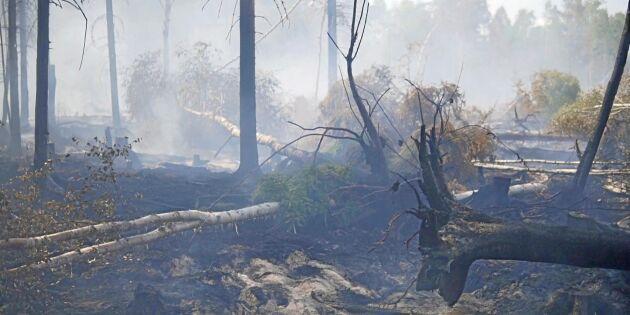 Stora kommunikationsproblem vid storbranden