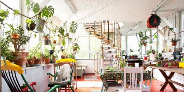 Grön downshifting: 8 moderna familjer som valt att växla ner