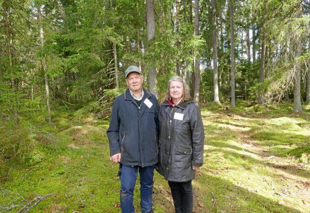 Jörgen och Solveig Björnberg har fått ta ner 250 kubikmeter barkborreskadad skog i år.