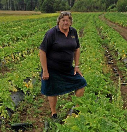 Gunilla Nordberg odlar zucchini.