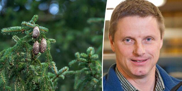 Skogsägarna som väljer bort certifiering