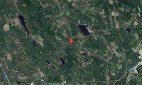 Skogsfastighet i Gävleborg såld