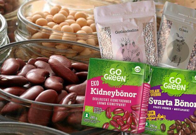 Efterfrågan på svenskodlat vegetariskt protein ökar, vilket gör att många alternativa proteinkällor nu testodlas.