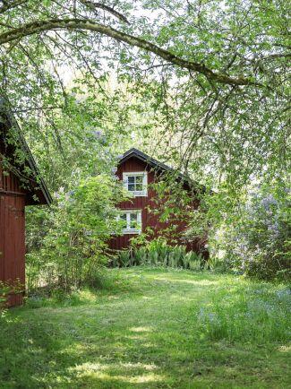 Inbäddat i grönska ligger det gamla. Faluröda hus som sedan många år används som gäststuga.