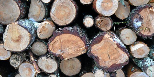 All hållbar tillväxt i skogen ska få avverkas