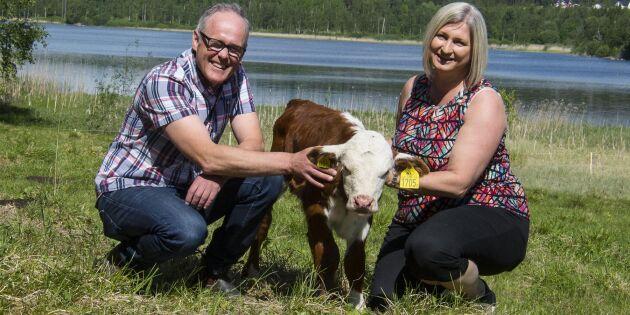 Så blev köttlådor en succé för familjen Eriksson