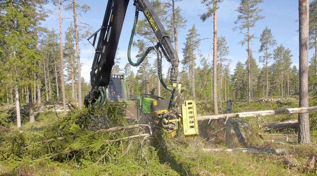 Arkivbild. Det bör vara helt upp till skogsägaren att avgöra när det är dags att avverka, tycker Centerpartiet.