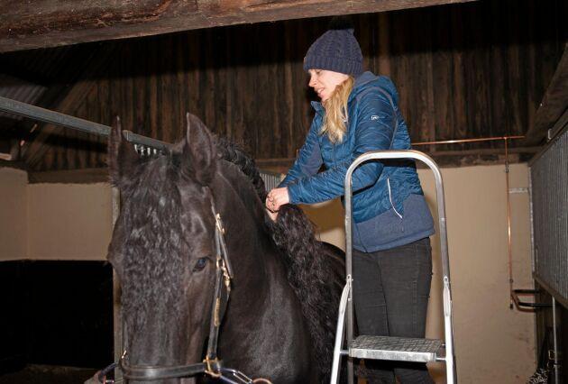 För att undvika slitage flätar Sandra Åhs Sivertsen Tymons långa man.