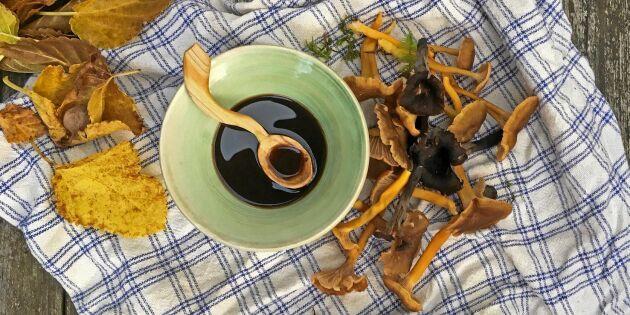 Koka din egen soja – av svamp från skogen