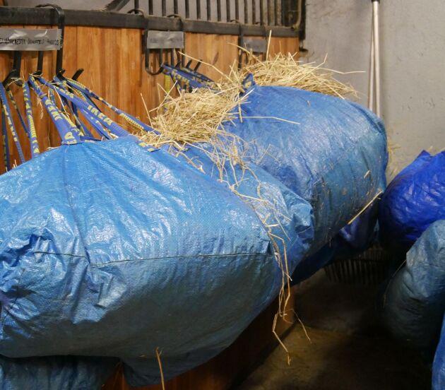 En fodervagn med våg skulle spara både tid och pengar i stället för att använda ikea-påsar till grovfodret menar Margareta Bendroth.