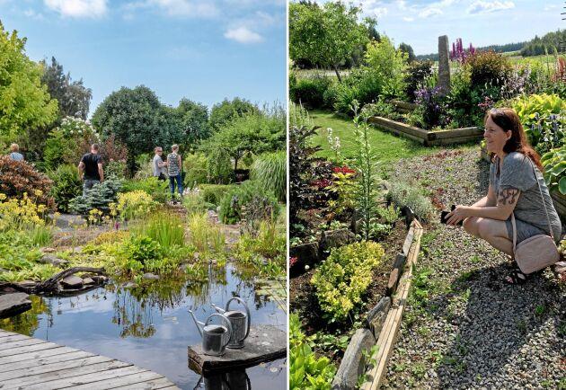 Inte en droppe regn! 118 trädgårdar över hela landet visades upp för besökarna.