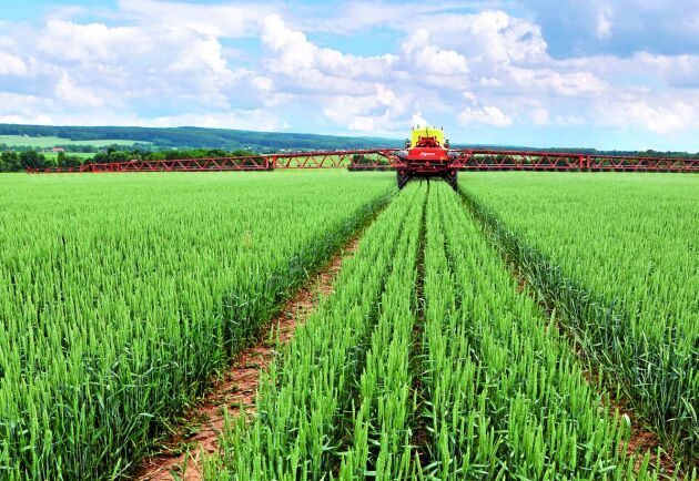 Julius Kühninstitutet vill växtskydda grödan rätt utan att öda preparat på sprutspåren.