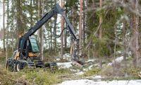 SCA stoppar avverkning efter Greenpeaces aktion