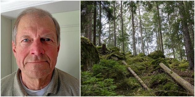 """""""Låt skogsägarna bruka skogen på olika sätt"""""""