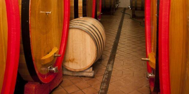 Så vill M bana väg för gårdsförsäljning av vin
