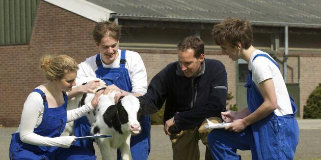 Så många jobb skapar mjölkbonden!