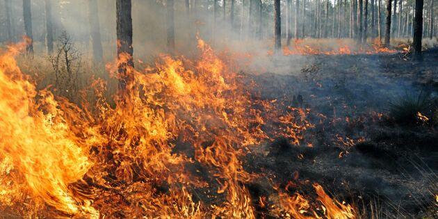 Fortsatt risk för bränder i nästan hela landet