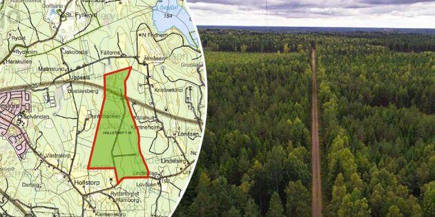 Sveaskog säljer skogsmark för 100 miljoner