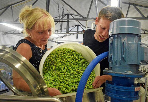 Carolina och Erik Råberg tillsätter den färska humlen till ölet.