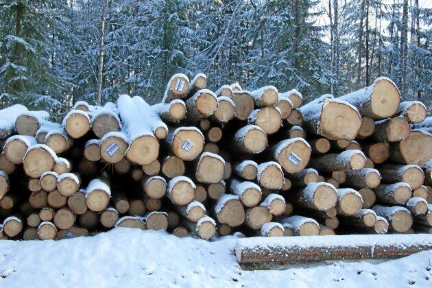 Nu ska Sverige rapportera till EU om vilken referensnivå för skoglig avverkning Sverige ska ha.