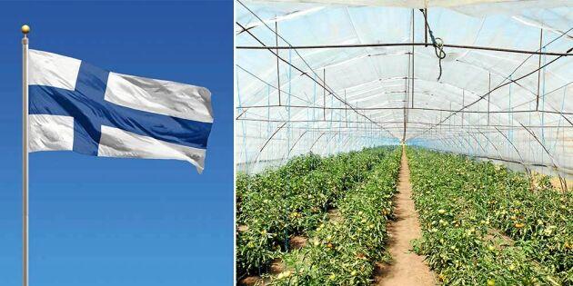 Därför är Finland bättre på självförsörjning än Sverige