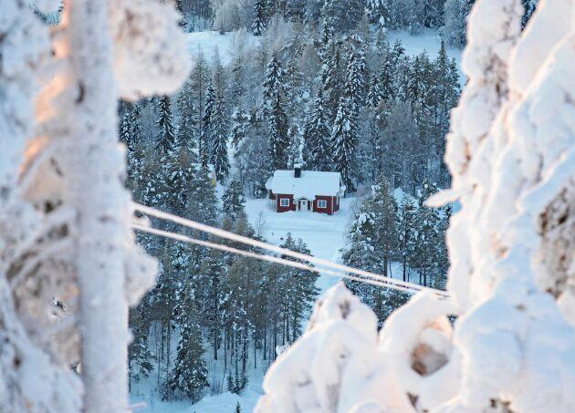 Det är glesbygd och långt till nöjesliv. Familjen stortrivs med friheten och naturen i Kåbdalis.