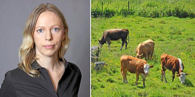 LRF: Globala studier ofta irrelevanta för Sverige