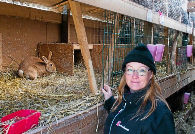 Malin Sundmark har varit kaninproducent sedan 2013 och utsatts för en mängd hot och trakasserier från djurrättsaktivister. Men trots hoten fortsätter hon. – Men jag har ändå världens bästa jobb, speciellt nu på våren när kaninungarna kommer, säger hon.