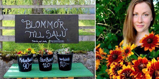 Frida odlar hållbara snittblommor i trädgården