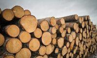 Även Mellanskog höjer priset