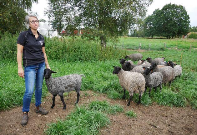 Viktoria Gustavsson arbetar deltid inom äldreomsorgen och spenderar resten av tiden med att jobba på gården.