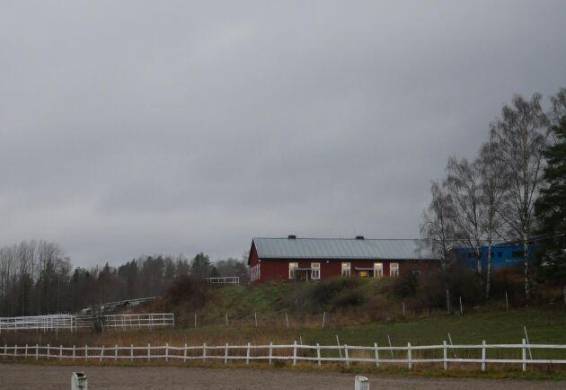 I paddocken arrangerades SM i hoppning 1986.