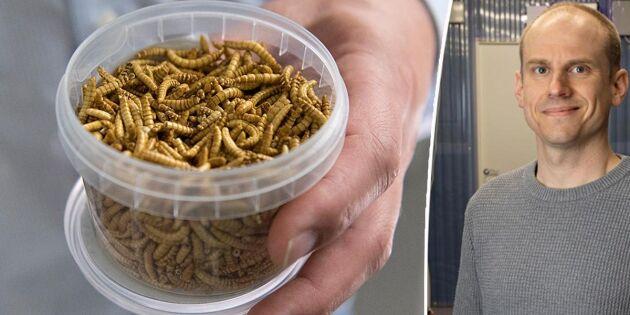 Insektsbolag tar in miljoninvestering