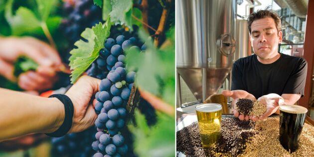 Stark utveckling för svenska drycker - här är trenderna