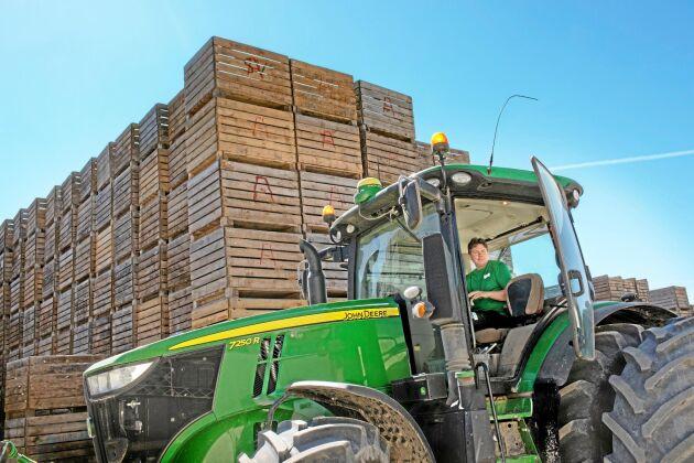 Från odling till färdigpackad vara. Jakob Ansén är ansvarig för odlingen och broden Olof för personal och försäljning.