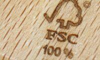 Förändra regelverket, Svenska FSC, så att inte små skogsägare kommer i kläm