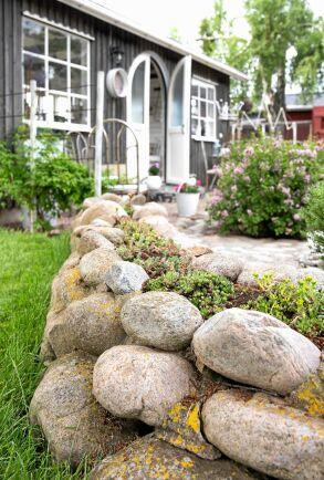 Bästa styrketräningen är att lägga stenmur. Även rundade stenar kan läggas som mur, om man bara ser till att den lutar inåt på båda sidor. Murens inre fyller Trine med grus och småsten. Med ett lager jord på toppen, trivs sedan de torktåliga sedumväxterna.