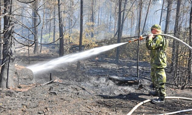 Hemvärnet hjälpte till med släckningsarbetet i Kristdalaområdet utanför Oskarshamn, en av sommarens många skogsbränder.