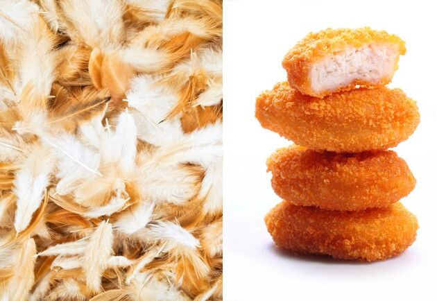 Ett företag i USA har lyckats skapa chicken nuggets av kycklingfjädrar i stället för kött.