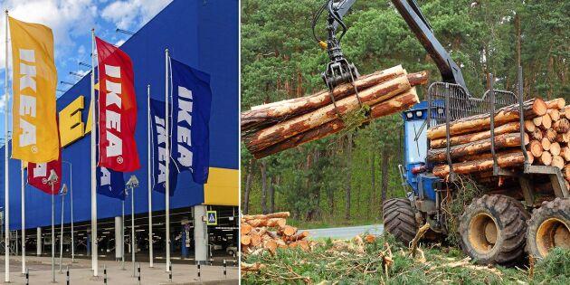 Trots klimatmål –en stock av hundra blir Ikeamöbel