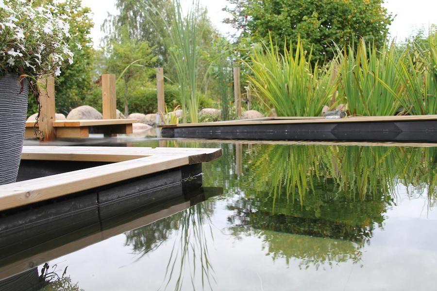 Den här baddammen utanför Kalmar har utformats med strama linjer som blir en fin kontrast till omgivande växter. I reningsdelen syns kaveldun och svärdslilja. Foto: Vattenliv.