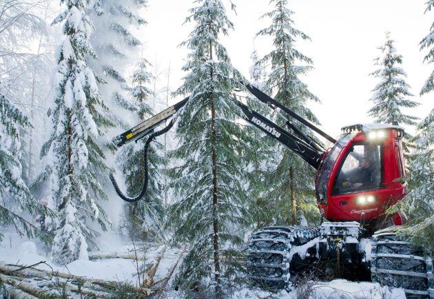 Skogslandet Sverige och fyra andra länder levererade 64 procent av det rundvirke som lämnar skogen för leverans till industrin.