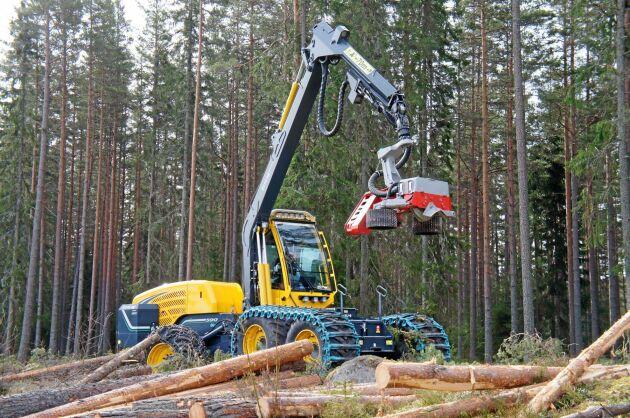 I Götland och södra Norrland minskade avverkningsanmälningarna i oktober jämfört med samma månad förra året.