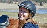 Stöd till ny generation av prisat hästplåster