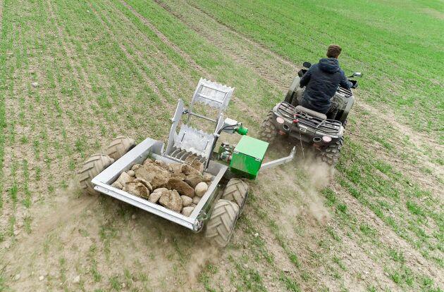 Stensamlaren är gjord för att köra över växande grödor och samla upp sten.
