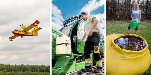 2018 i bilder: Optimism – trots att 25 000 hektar gick upp i rök