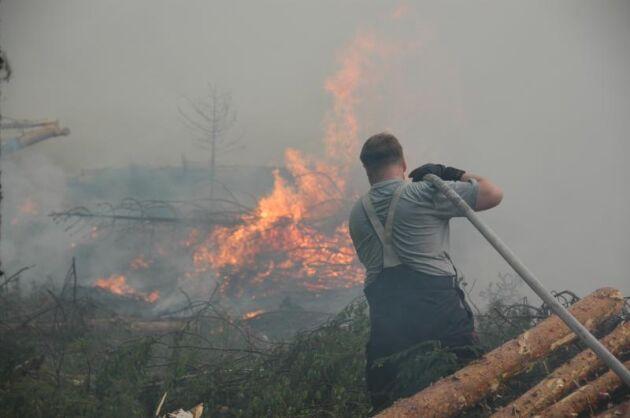 Förra sommarens skogsbränder ställde höga krav på räddningstjänsten.