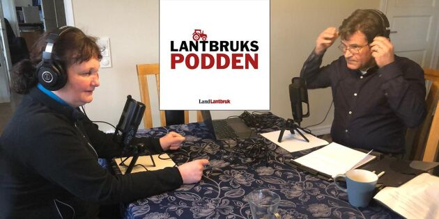 """Lämnade Nederländerna för att driva mjölkgård i Sverige: """"Mindre regelkrångel"""""""