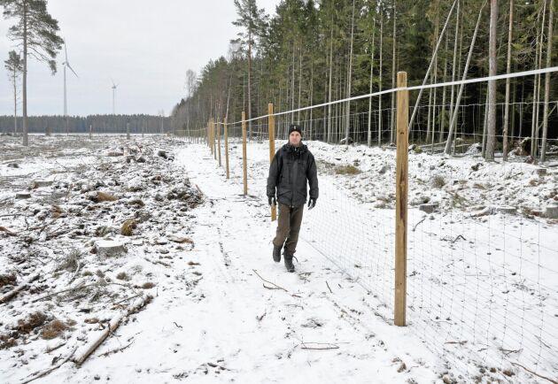 Om några månader sätts 14 000 tallplantor i hägnet i Vedum. Jonas Larsson, Sydved, tror att investeringen kan ge en skälig ränta på sikt. Men det krävs att pengarna kan avvaras under lång tid.