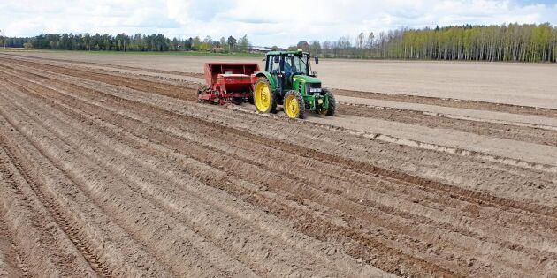 Vårbrukskollen: Så har det gått för bönderna i år